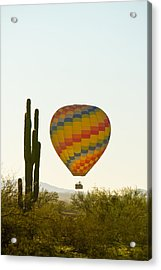Hot Air Balloon In The Arizona Desert With Giant Saguaro Cactus Acrylic Print