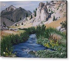 Hot Creek Acrylic Print