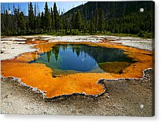 Hot Springs Yellowstone Acrylic Print