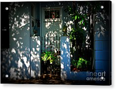House Door 11 In Charleston Sc  Acrylic Print by Susanne Van Hulst