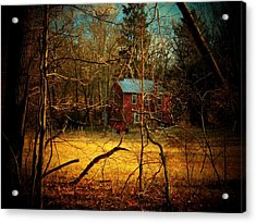 House In The Forest Acrylic Print by Joyce Kimble Smith