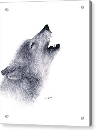 Acrylic Print featuring the drawing Howl by Lucy D