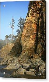 Hug Point Outcrop Acrylic Print by Steven A Bash
