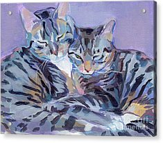 Hugs Purrs And Stripes Acrylic Print
