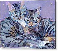 Hugs Purrs And Stripes Acrylic Print by Kimberly Santini