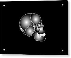 Human Skull Anatomy, Artwork Acrylic Print by Francis Leroy, Biocosmos