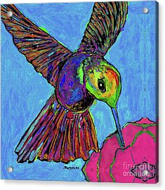 Hummingbird On Blue Acrylic Print