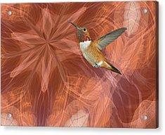 Hummingbird Portal Acrylic Print by Gregory Scott