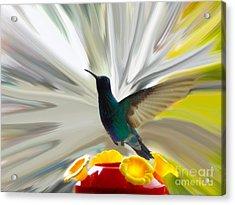 Hummingbird Series Vii Acrylic Print by Al Bourassa