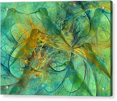 Hummingbirds Acrylic Print