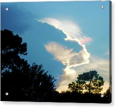 Hungry Cloud Acrylic Print by Juliana  Blessington