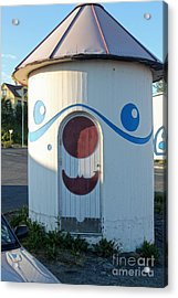 Husavik Iceland Funny Building Acrylic Print by Gregory Dyer