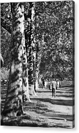 Acrylic Print featuring the photograph Hyde Park Trees by Maj Seda