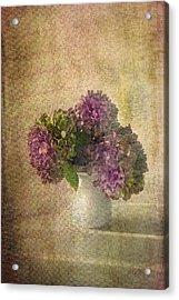 Hydrangea Blossoms Acrylic Print by Michael Petrizzo
