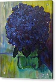 Hydrangeas Acrylic Print by Dani Altieri Marinucci