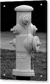 Hydrant Acrylic Print by Elizabeth  Doran