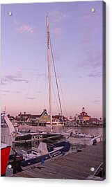 Hydroptere Acrylic Print by Heidi Smith