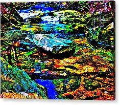 Hyper Childs Brook Z 52 Acrylic Print by George Ramos
