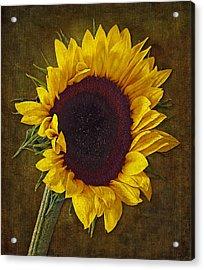 I Dance With The Sun Acrylic Print