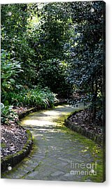 I Want To Walk With You Acrylic Print by Maria Urso