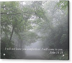 Acrylic Print featuring the photograph I Will Not Leave You Comfortless by Diannah Lynch