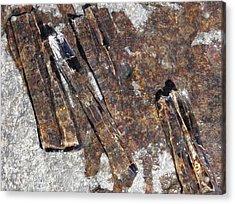 Ice Crystals 2 Acrylic Print