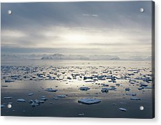 Ice Floating In Isfjorden Acrylic Print by Håkon Kjøllmoen Photography