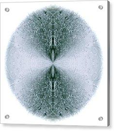 Ice Form Acrylic Print by John O Doherty