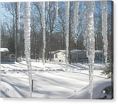 Acrylic Print featuring the photograph Icicles Through The Window Glass by Pamela Hyde Wilson