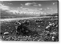 Icy Alaskan Beach Acrylic Print by Michele Cornelius
