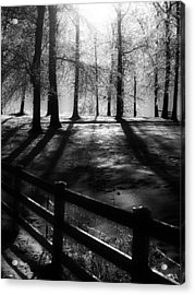 Icy Morning Acrylic Print