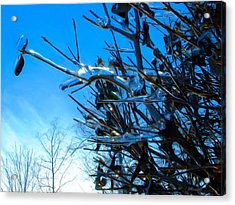 Acrylic Print featuring the photograph Icy Trim by Dennis Lundell