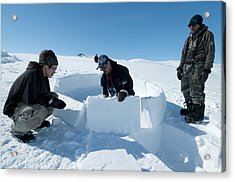 Igloo Building, Arctic Acrylic Print