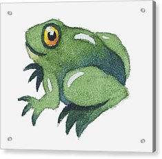 Illustration Of A Frog Acrylic Print by Dorling Kindersley