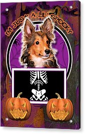 I'm Just A Lil' Spooky Sheltie Puppy Acrylic Print by Renae Laughner