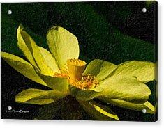 Acrylic Print featuring the photograph Impasto Lotus by Travis Burgess