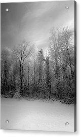 Impressionist Snow Acrylic Print