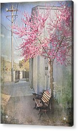 In A Small Town Acrylic Print by Laurie Search