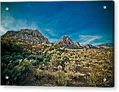 In Color Acrylic Print by Merrick Imagery