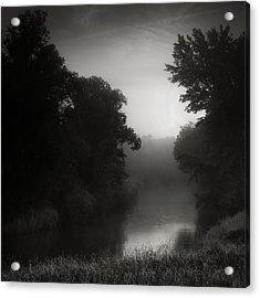 In Floodplain Forest Acrylic Print by Jaromir Hron
