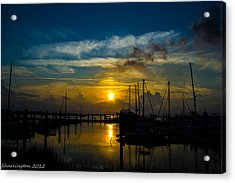 In For The  Night Acrylic Print by Shannon Harrington