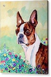 In Mom's Flowers - Boston Terrier Acrylic Print