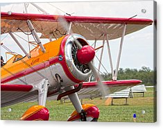 In Plane View Acrylic Print by Betsy Knapp