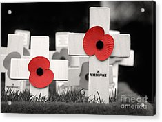 In Remembrance Acrylic Print by Jane Rix