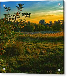 In The Evening On The River Acrylic Print by Gennadiy Golovskoy