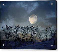 In The Moon Light Acrylic Print