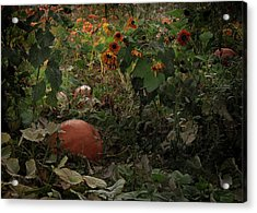 In The Shades Of An Autumn Sky Acrylic Print by John Poon