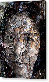 In Transition Acrylic Print by Christopher Gaston
