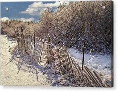 Acrylic Print featuring the photograph In Winter's Chill by Yelena Rozov