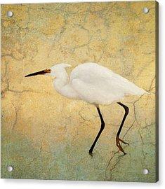 Incidental Dance Acrylic Print by Karen Lynch